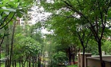 万科城市花园小区照片4